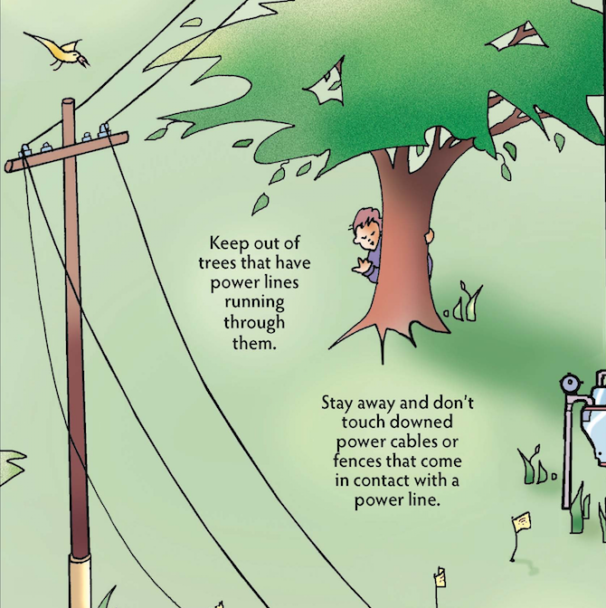 Power Lines In Backyard: Using It Safely Outside